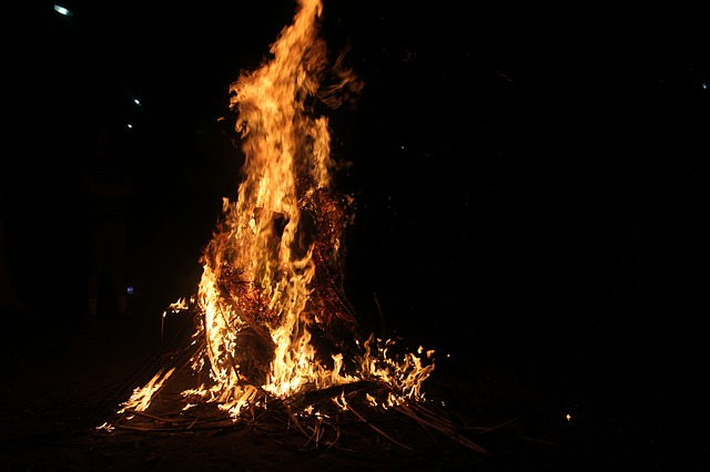 ognisko firmowe