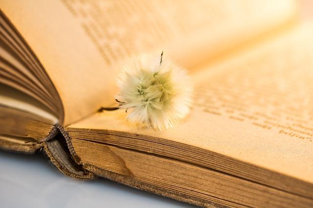 Książka o życiu